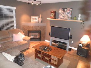 Photo 9: 23796 110B Avenue in Maple Ridge: Cottonwood MR House for sale : MLS®# R2019785