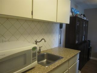 Photo 4: 308 809 W 16TH Street in North Vancouver: Hamilton Condo for sale : MLS®# R2067339