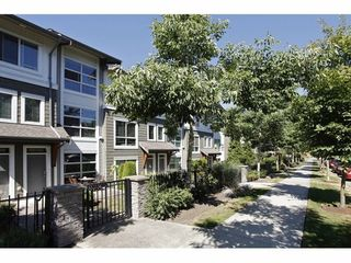 Photo 9: 5 6671 121 Street in Surrey: Home for sale : MLS®# F1417029