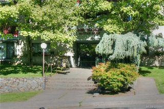 Photo 16: 220 3255 Glasgow Avenue in VICTORIA: SE Quadra Condo Apartment for sale (Saanich East)  : MLS®# 379966