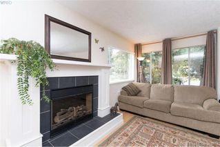 Photo 17: 4019 Malton Ave in VICTORIA: SE Mt Doug House for sale (Saanich East)  : MLS®# 770733