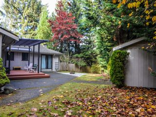 Photo 8: 4200 Forfar Rd in CAMPBELL RIVER: CR Campbell River South House for sale (Campbell River)  : MLS®# 774200