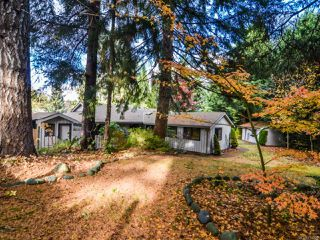 Photo 7: 4200 Forfar Rd in CAMPBELL RIVER: CR Campbell River South House for sale (Campbell River)  : MLS®# 774200