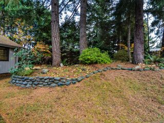 Photo 39: 4200 Forfar Rd in CAMPBELL RIVER: CR Campbell River South House for sale (Campbell River)  : MLS®# 774200