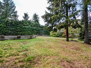 Photo 55: 4200 Forfar Rd in CAMPBELL RIVER: CR Campbell River South House for sale (Campbell River)  : MLS®# 774200
