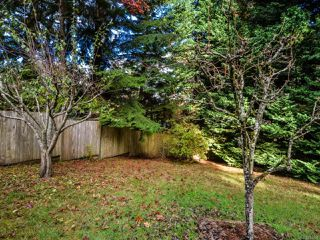 Photo 46: 4200 Forfar Rd in CAMPBELL RIVER: CR Campbell River South House for sale (Campbell River)  : MLS®# 774200