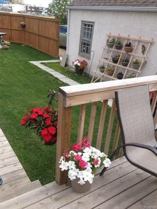 Photo 17: 939 Dugas Street in Winnipeg: Windsor Park Residential for sale (2G)  : MLS®# 1810786