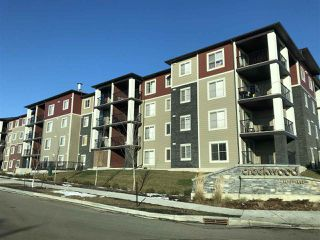 Main Photo: 313 5370 CHAPPELLE Road in Edmonton: Zone 55 Condo for sale : MLS®# E4135958