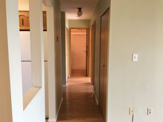 """Photo 6: 302 32119 OLD YALE Road in Abbotsford: Abbotsford West Condo for sale in """"Yale Manor"""" : MLS®# R2329445"""
