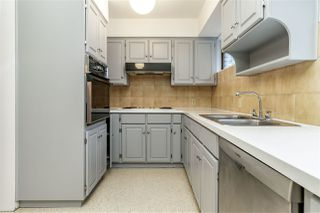 Photo 12: 825 W 46TH Avenue in Vancouver: Oakridge VW House for sale (Vancouver West)  : MLS®# R2334218