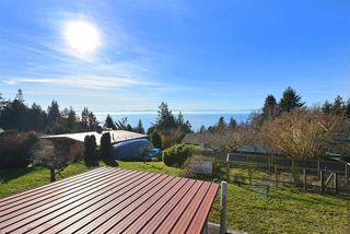 Photo 16: 4911 LAUREL Avenue in Sechelt: Sechelt District House for sale (Sunshine Coast)  : MLS®# R2338085