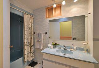 Photo 8: 4911 LAUREL Avenue in Sechelt: Sechelt District House for sale (Sunshine Coast)  : MLS®# R2338085