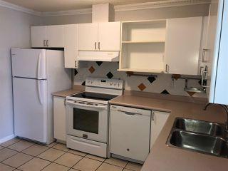 "Photo 5: 307 12130 80 Avenue in Surrey: West Newton Condo for sale in ""LA COSTA GREEN"" : MLS®# R2341447"
