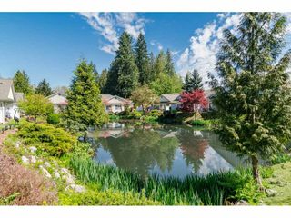 """Photo 20: 102 20655 88 Avenue in Langley: Walnut Grove Townhouse for sale in """"Twin Lakes"""" : MLS®# R2355122"""