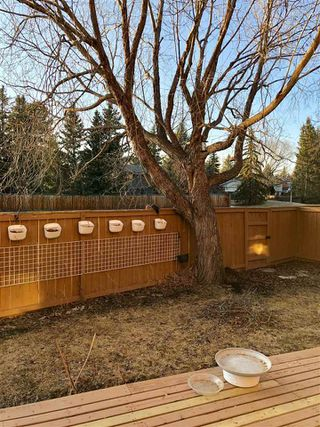 Photo 29: 137 WOLF WILLOW Crescent in Edmonton: Zone 22 Townhouse for sale : MLS®# E4152005