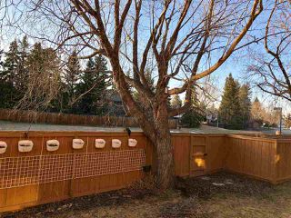 Photo 3: 137 WOLF WILLOW Crescent in Edmonton: Zone 22 Townhouse for sale : MLS®# E4152005