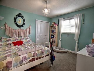 Photo 12: 18 CODETTE Way: Sherwood Park House for sale : MLS®# E4161861