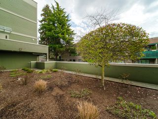 Photo 14: 101 518 THIRTEENTH Street in New Westminster: Uptown NW Condo for sale : MLS®# R2382615