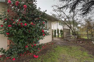 Photo 20: 3901 Stamboul St in VICTORIA: SE Mt Tolmie House for sale (Saanich East)  : MLS®# 841006