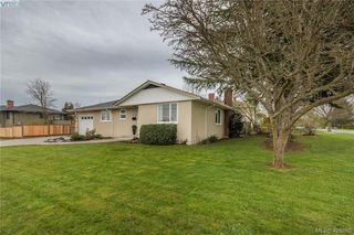 Photo 19: 3901 Stamboul St in VICTORIA: SE Mt Tolmie House for sale (Saanich East)  : MLS®# 841006