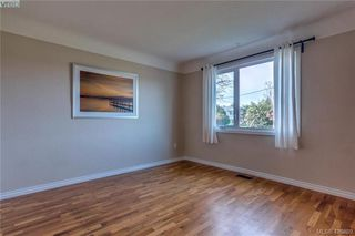 Photo 17: 3901 Stamboul St in VICTORIA: SE Mt Tolmie House for sale (Saanich East)  : MLS®# 841006