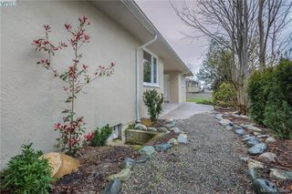 Photo 21: 3901 Stamboul St in VICTORIA: SE Mt Tolmie House for sale (Saanich East)  : MLS®# 841006
