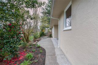Photo 23: 3901 Stamboul St in VICTORIA: SE Mt Tolmie House for sale (Saanich East)  : MLS®# 841006