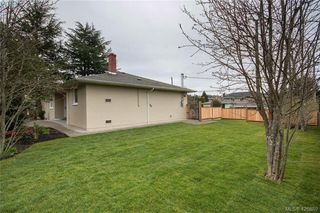 Photo 24: 3901 Stamboul St in VICTORIA: SE Mt Tolmie House for sale (Saanich East)  : MLS®# 841006