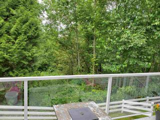 "Photo 40: 25 11355 236 Street in Maple Ridge: Cottonwood MR Townhouse for sale in ""Robertson Ridge"" : MLS®# R2478366"