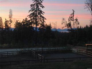 Photo 60: 1025 Cinnamon Sedge Way in : PQ Nanoose House for sale (Parksville/Qualicum)  : MLS®# 857822
