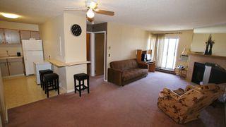 Photo 4: 311 1679 Plessis Road in Winnipeg: Transcona Condominium for sale (North East Winnipeg)  : MLS®# 1208035
