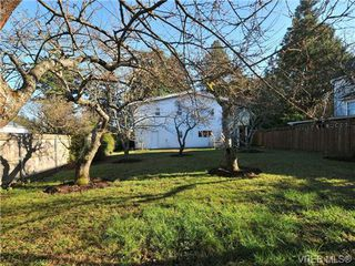 Photo 20: 4458 Tyndall Ave in VICTORIA: SE Gordon Head House for sale (Saanich East)  : MLS®# 692126
