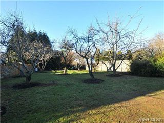 Photo 19: 4458 Tyndall Ave in VICTORIA: SE Gordon Head House for sale (Saanich East)  : MLS®# 692126