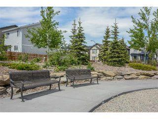 Photo 30: 63 SILVERADO PLAINS Manor SW in Calgary: Silverado House for sale : MLS®# C4015040