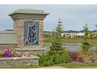 Photo 33: 63 SILVERADO PLAINS Manor SW in Calgary: Silverado House for sale : MLS®# C4015040