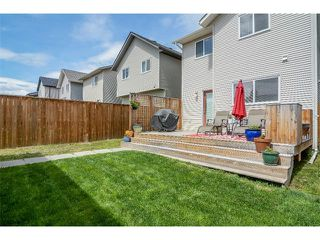 Photo 25: 63 SILVERADO PLAINS Manor SW in Calgary: Silverado House for sale : MLS®# C4015040