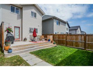 Photo 24: 63 SILVERADO PLAINS Manor SW in Calgary: Silverado House for sale : MLS®# C4015040