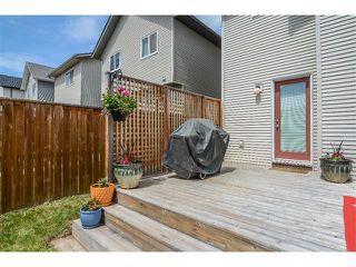 Photo 20: 63 SILVERADO PLAINS Manor SW in Calgary: Silverado House for sale : MLS®# C4015040