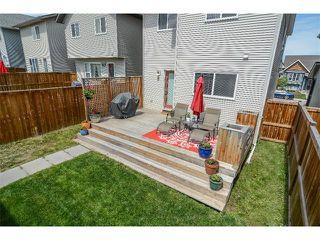 Photo 26: 63 SILVERADO PLAINS Manor SW in Calgary: Silverado House for sale : MLS®# C4015040