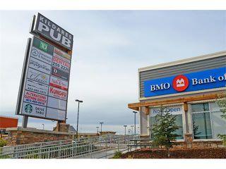 Photo 34: 63 SILVERADO PLAINS Manor SW in Calgary: Silverado House for sale : MLS®# C4015040