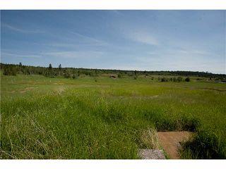 Photo 2: LOT 3 TROUT Drive: Lac la Hache House for sale (100 Mile House (Zone 10))  : MLS®# N246161