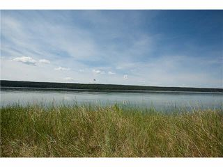 Photo 1: LOT 3 TROUT Drive: Lac la Hache House for sale (100 Mile House (Zone 10))  : MLS®# N246161