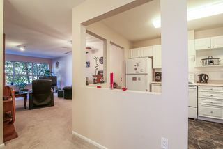 "Photo 2: 212 9650 148 Street in Surrey: Guildford Condo for sale in ""Hartford Woods"" (North Surrey)  : MLS®# R2005610"