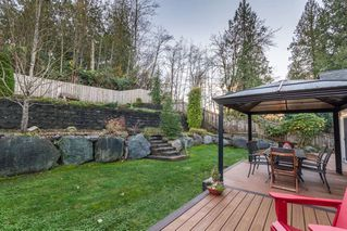 "Photo 18: 24330 MCCLURE Drive in Maple Ridge: Albion House for sale in ""MAPLE CREST"" : MLS®# R2140422"