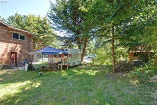 Photo 19: 1005 Bristol Rd in VICTORIA: SE Quadra Single Family Detached for sale (Saanich East)  : MLS®# 764399