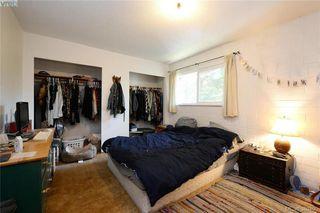 Photo 11: 1005 Bristol Rd in VICTORIA: SE Quadra Single Family Detached for sale (Saanich East)  : MLS®# 764399