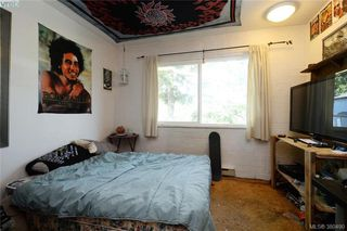 Photo 15: 1005 Bristol Rd in VICTORIA: SE Quadra Single Family Detached for sale (Saanich East)  : MLS®# 764399