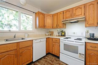 Photo 8: 1005 Bristol Rd in VICTORIA: SE Quadra Single Family Detached for sale (Saanich East)  : MLS®# 764399