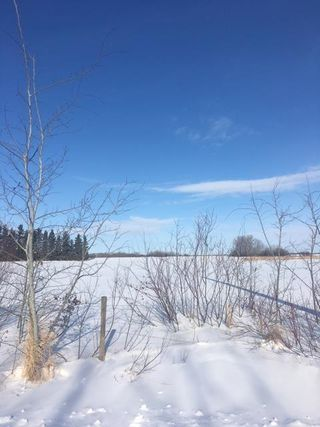 Main Photo: RR 234 TWP 552: Rural Sturgeon County Rural Land/Vacant Lot for sale : MLS®# E4098683