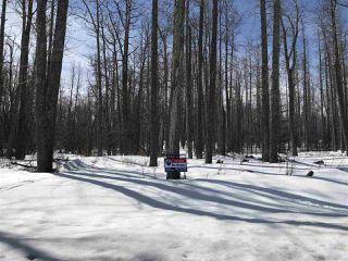 "Main Photo: LOT 7 TEA CREEK Estates: Charlie Lake Home for sale in ""TEA CREEK ESTATES"" (Fort St. John (Zone 60))  : MLS®# R2259459"